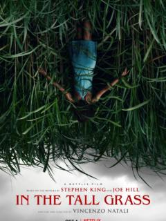 In the Tall Grass izle (2019)